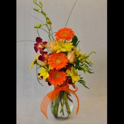 Gerberas and Orchids